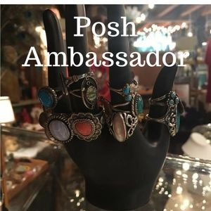 I'm a Posh Ambassador - So Excited!